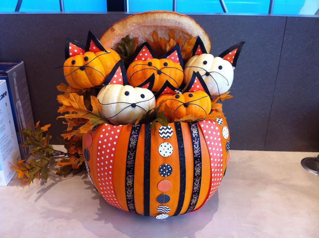 No carve pumpkin contest winners
